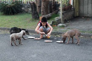 It turns out his son was taking those trips for the past two weeks to feed some stray dogs he met.